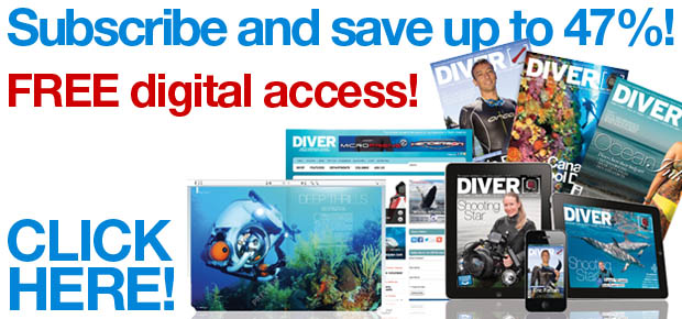 Subscribe to DIVER and get free digital access