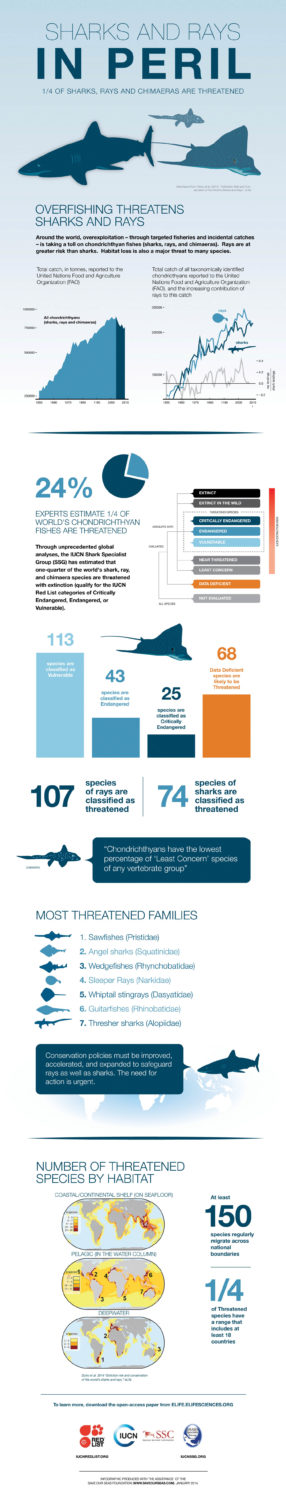 Infographic produced by IUCN with the assistance of the www.saveourseas.com