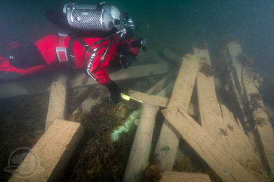 Astern of the wreck, Parks Canada underwater archaeologist Filippo Ronca measures the muzzle bore diameter of one of two cannons found on the site, serving to identify this gun as a brass 6 pounder. Photo: Thierry Boyer, Parks Canada