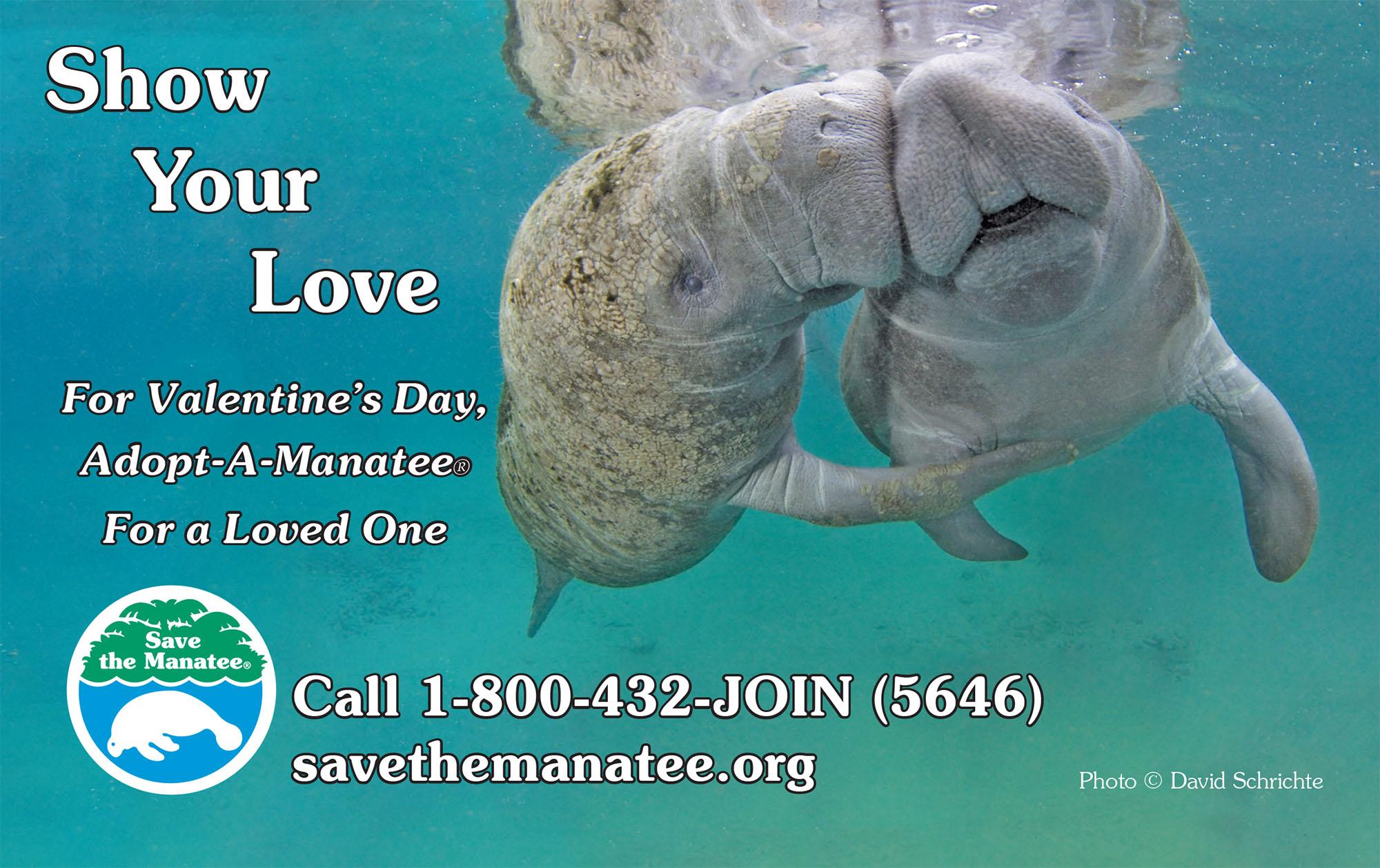 SMC_PSA_Valentine_2015_HalfPage.indd