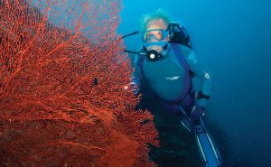 Jean-Michel in Papua New Guinea where he and his team enjoyed diving the 'slow lane'. Photo: Ocean Futures Society